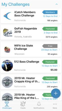 Challenge Screenshot